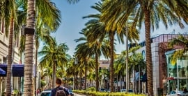 Rows of palm trees line Rodeo Drive as shoppers walk by.
